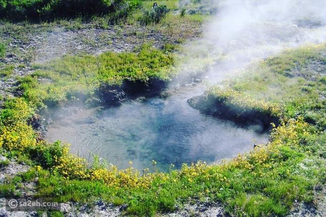 حمامات المياه الكبريتية في يلوا