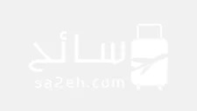 الإمارات: مواعيد تجديد الإقامات والبطاقات المنتهية