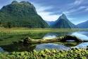 2- نيوزيلندا