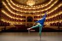 صور مسرح البولشوي