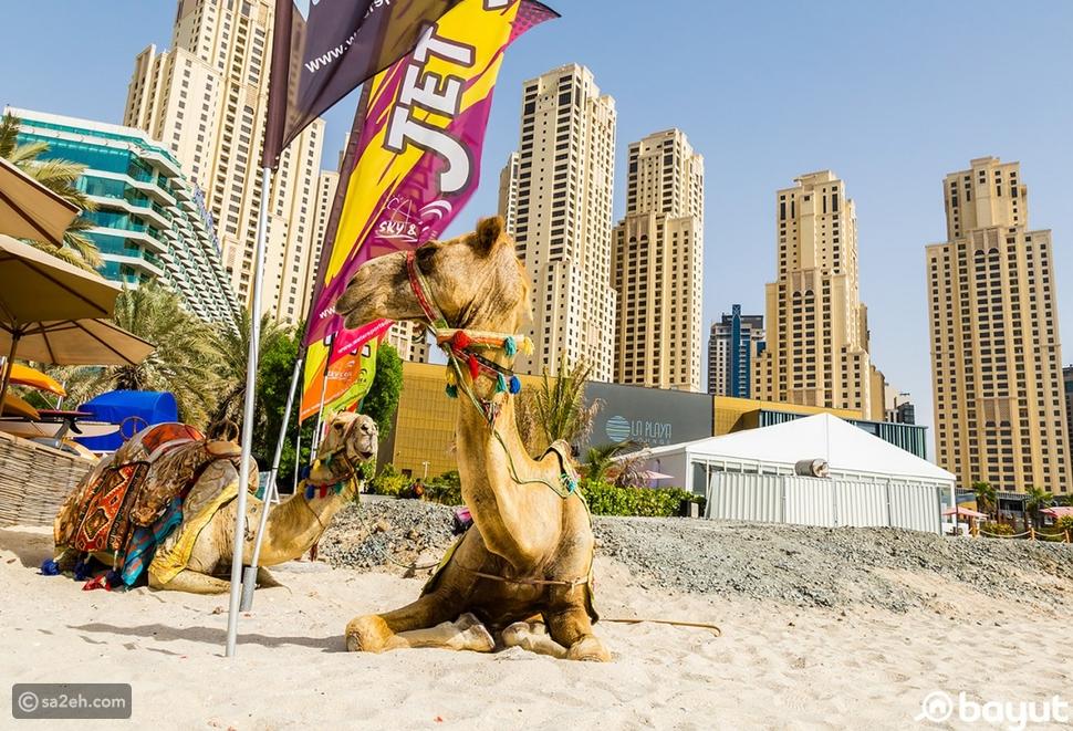 تعرف واستمتع بأروع الأوقات في أفضل الشواطئ العامة بدبي
