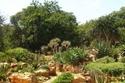 2حديقة والترسيسولو