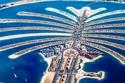 نخلة دبي