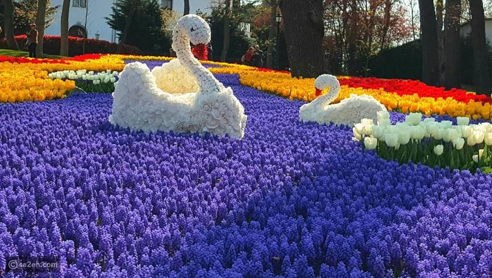 الربيع في تركيا