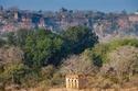 حديقة رانثامبور  الهند