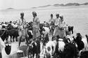 3- مجموعة من الرعاة عند آبار القاعية والدفينة