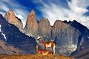 شاهد أروع قمم الجبال في شيلي