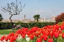 أجمل مدينة  في العالم-ساحة مايكل أنجيولو