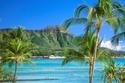أجمل الشواطئ في العالم في هاواي