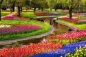 شاهد هذه الصور: عندما تكتسي الطبيعة بحلة الجمال في فصل الربيع