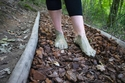حديقة الحواس الخمس تقدم للزائرين تجربة فريدة تربطهم بالطبيعة