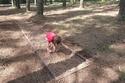 تقدم حديقة الحواس الخمس تجربة رائعة لجميع الأعمار
