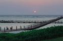الرصيف البحري في منتجع أوشيانا