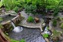 أجمل الحدائق الطبيعية في معشوقية