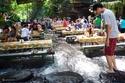 أفضل أماكن السياحة والسفر خلال العيد وعطلة الصيف