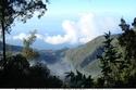 السياحة في فنزويلا  منتزه أفيلا الوطني