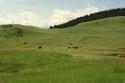 السياحة في كازاخستان سارياركا