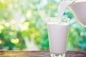 الحليب