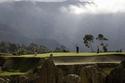 ملعب للغولف بالقرب من بركان جبل ميرابي النشط