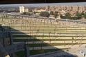 تبلغ مساحة المتحف 117 فداناً أي 500 ألف متر مربع