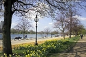 الحدائق الملكية