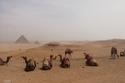 أهرامات الجيزة في القاهرة 1