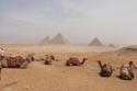 أهرامات الجيزة في القاهرة