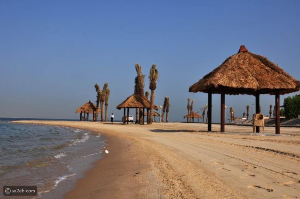 شاطئ النخيل: