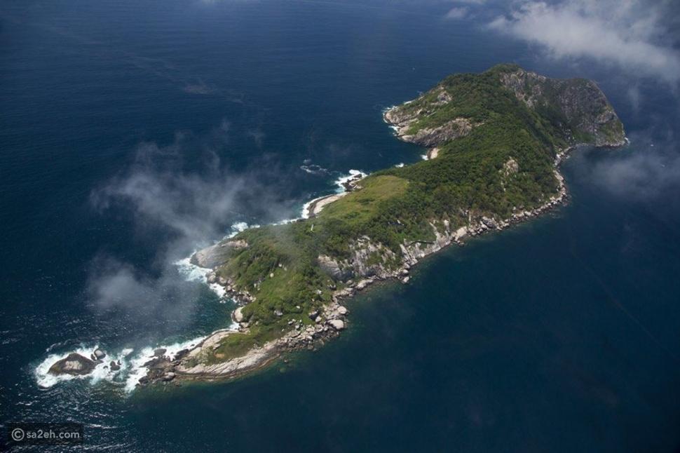 جزيرة الأفاعي