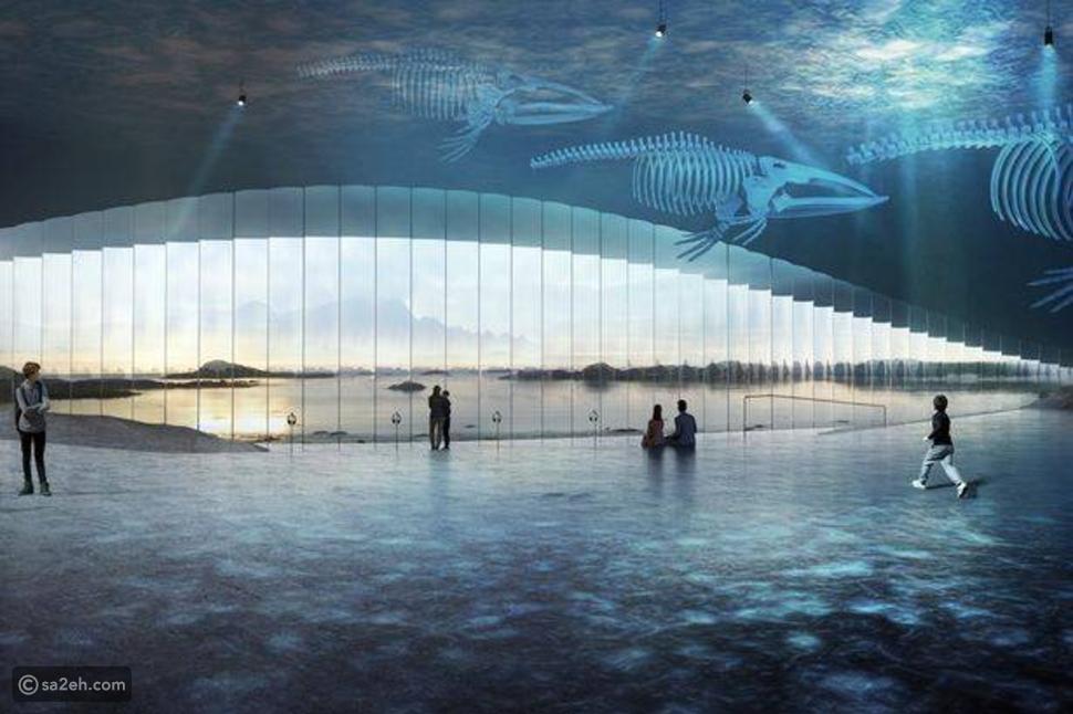 The whole: اقترب من عالم الحيتان في هذا المبنى النرويجي المذهل