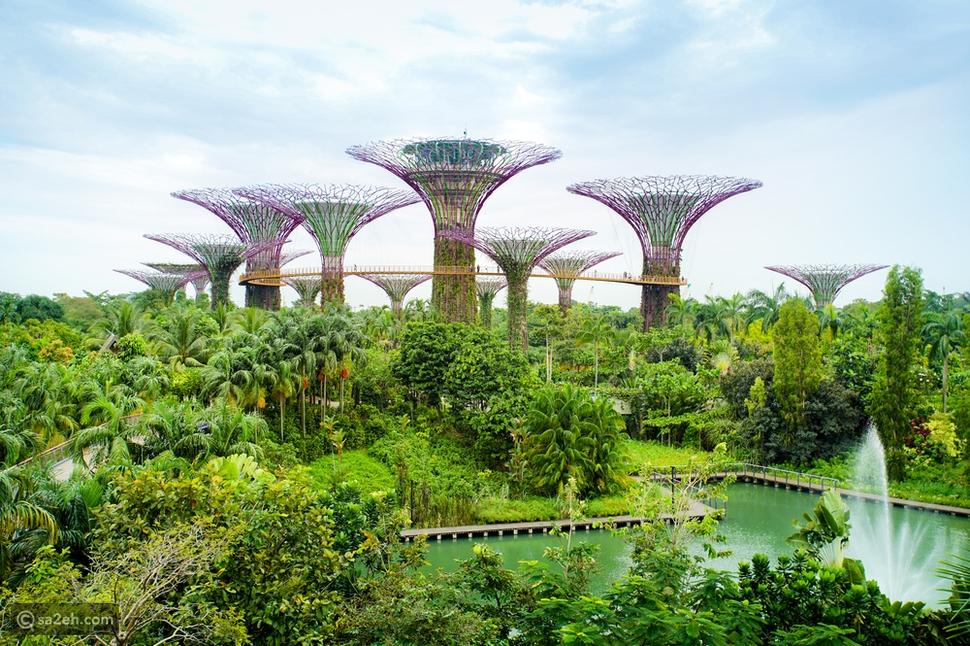 أبرز المعالم السياحية في سنغافورة