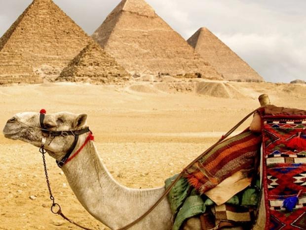 ما رأيك في تجربة ركوب الجمال ورحة سفاري في صحراء مصر والأهرامات