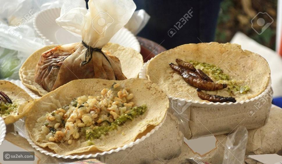 سائح: بالصور.. تعرّف على أشهر الأطعمة الممنوع طهيها في الفنادق العربية