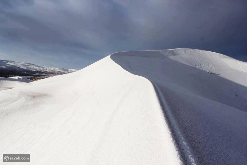 بالصور.. الصحراء تتحول إلى بقع ثلجية!