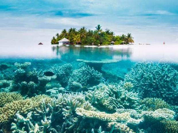 نصائح أساسية قبل السفر لجزر المالديف