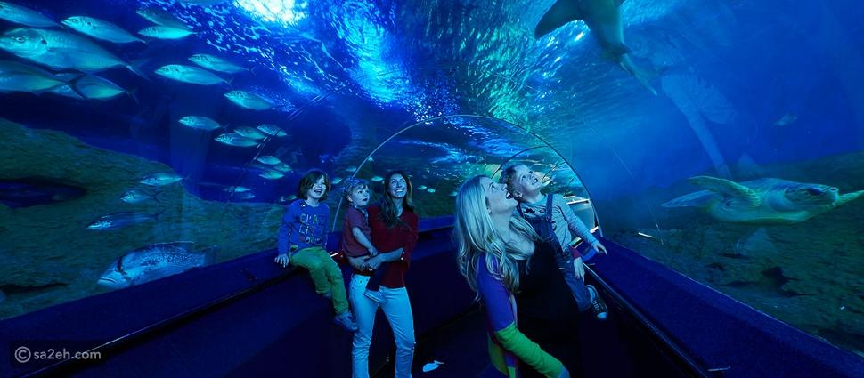 أروع وأكبر 10 أحواض للأسماك في العالم - بالصور
