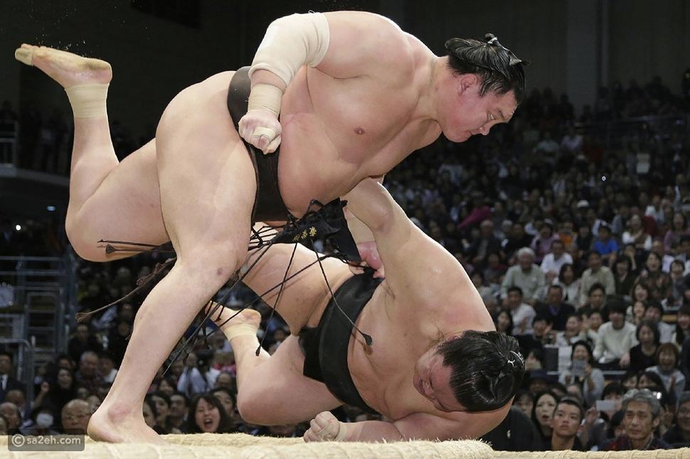 ما لاتعرفونه عن السومو (المصارعة اليابانية)