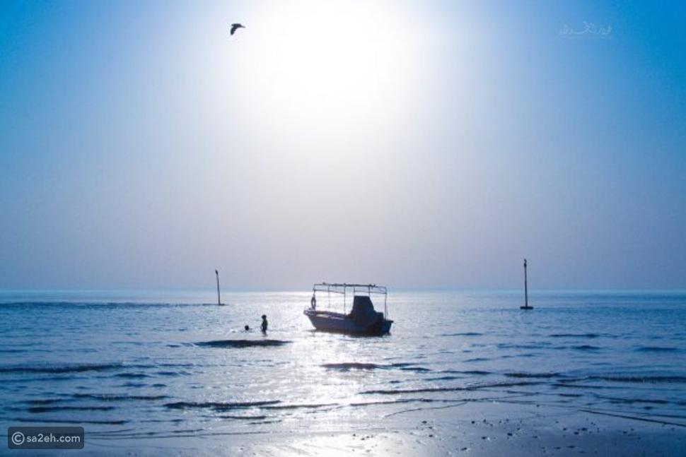 شاطئ المويلح أحد شواطئ ضباء