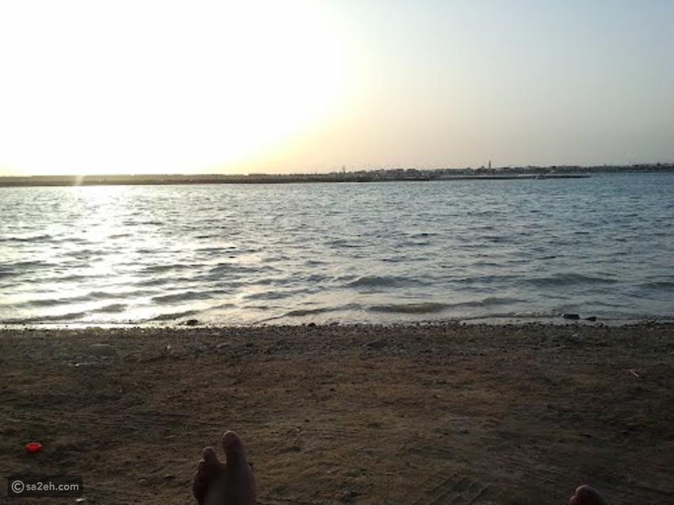 جزيرة المحار: