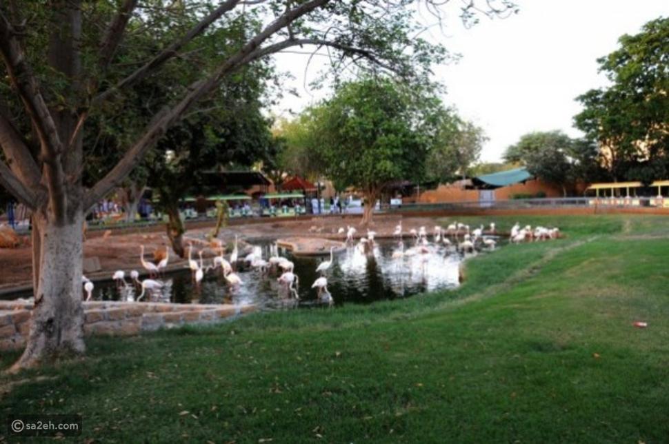 حديقة الحيوانات الرياض: