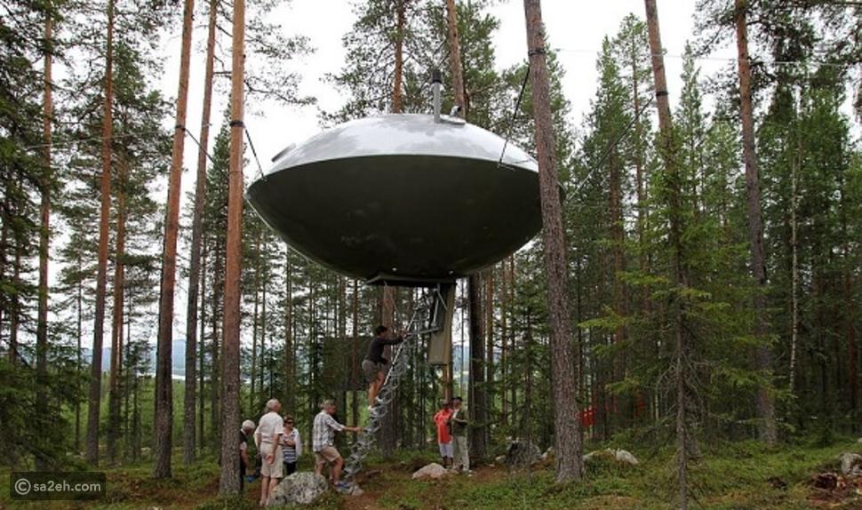 السياحة في الغابات: 8 وجهات رائعة حول العالم من أجل تجربة لن تنسى