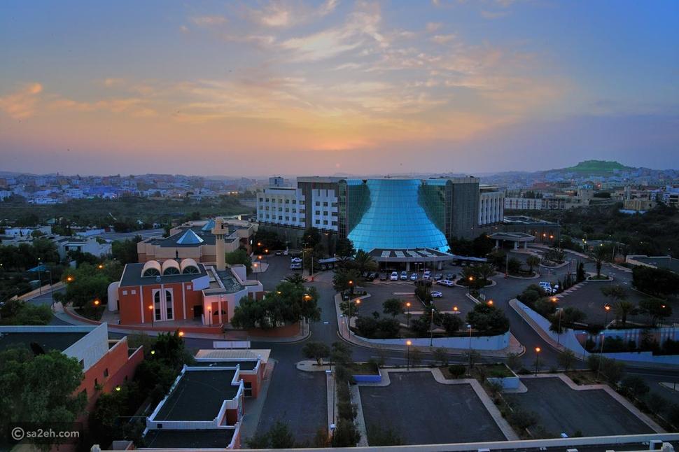 فندق قصر أبها: