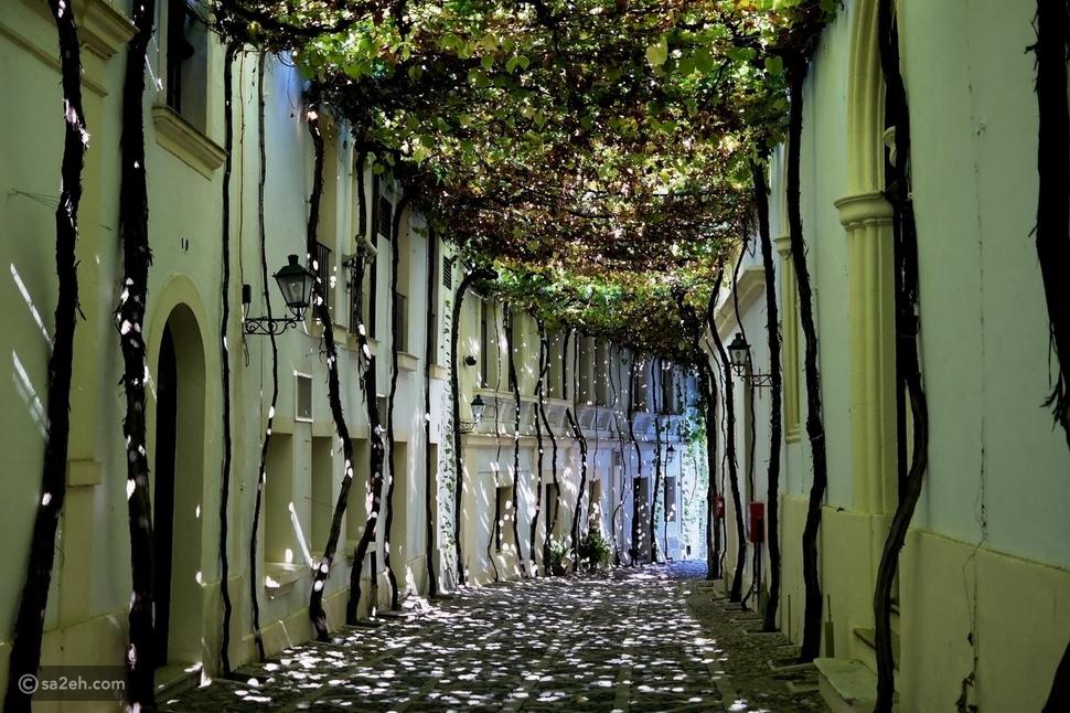 شوارع جيريز دي لافرونتيرا الأندلسية