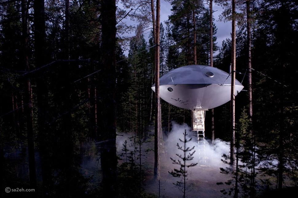 أجمل بيوت الشجر  Tree-houses في العالم