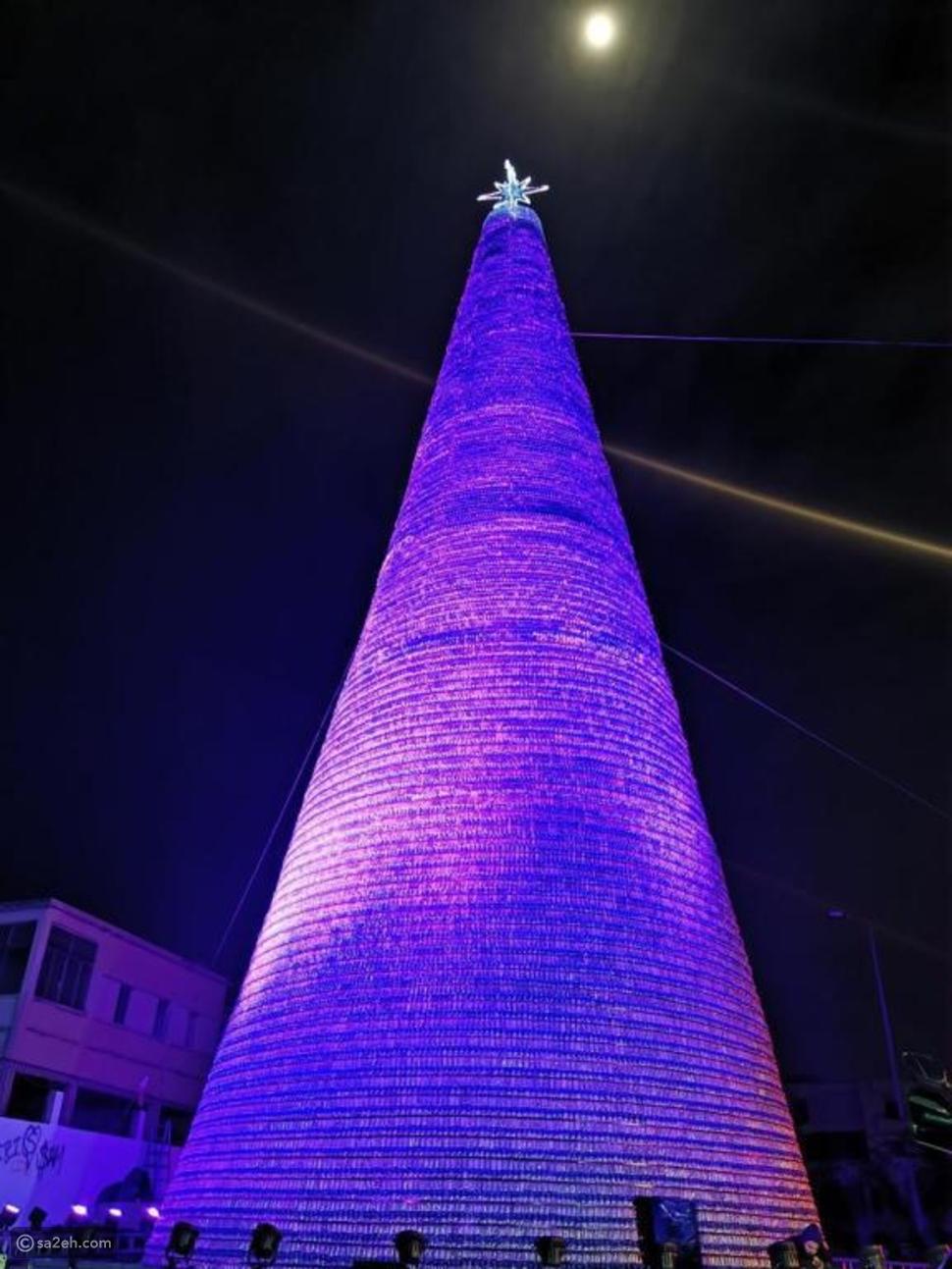 صديقة للبيئة: شجرة كريسماس لبنانية تدخل موسوعة جينيس