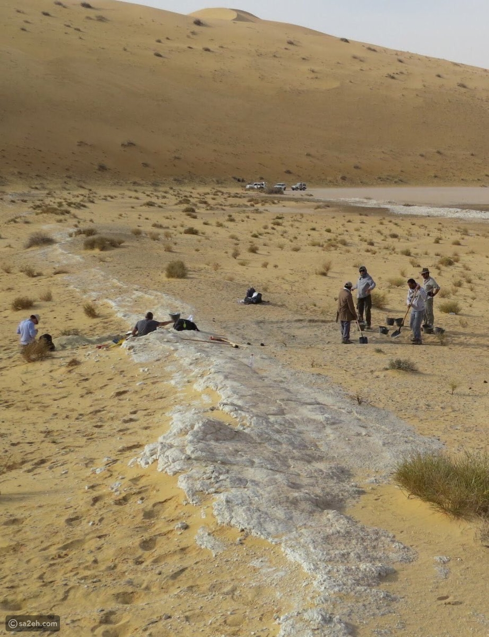 آثار لأقدام وأنهار وغابات: هل كانت الجزيرة العربية خضراء؟