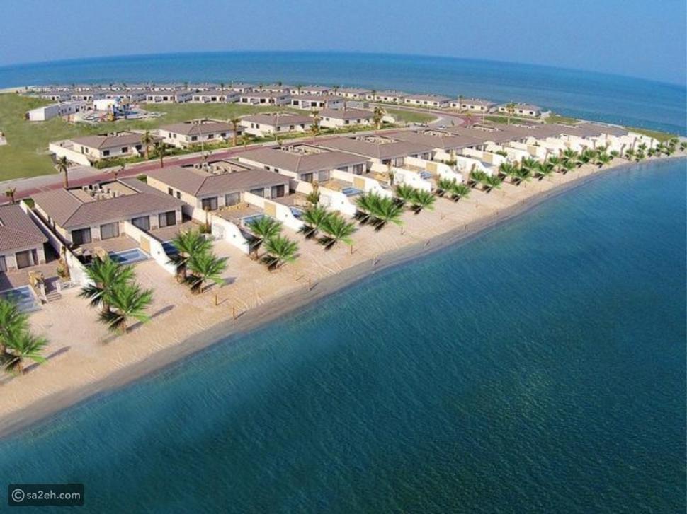شاطئ دانا باي: