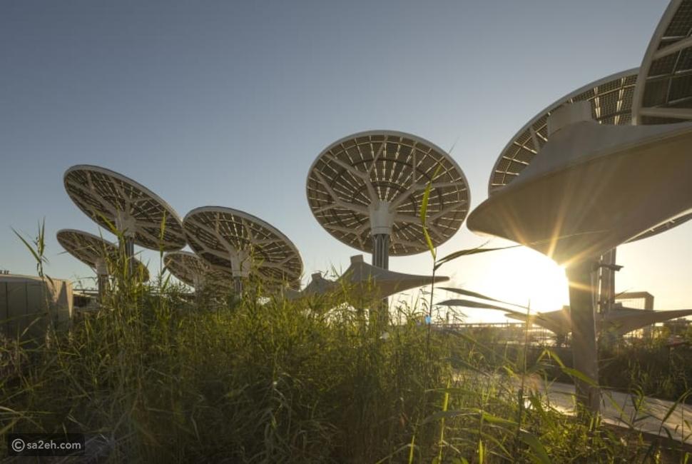 كيف ستكون تجربة الزائر داخل جناح الاستدامة في إكسبو دبي 2020؟