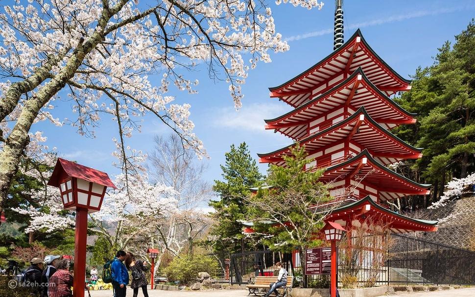 تأشيرة اليابان خطوة بخطوة