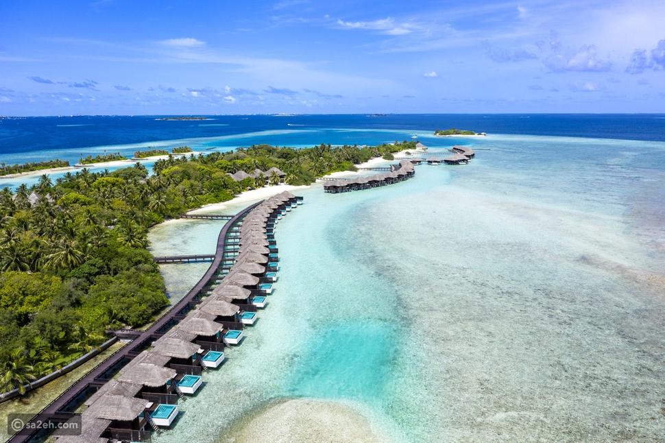 منتجع وسبا شيراتون المالديف فول مون يحتفي بزرع هيكله المرجاني رقم 100